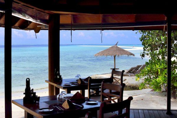 gangehi-ristoranti-11